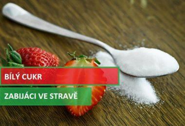 Cukr - zabiják ve stravování