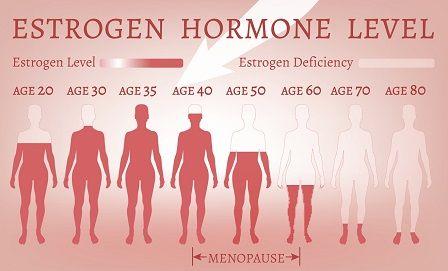 Pokles estrogenu - statistika