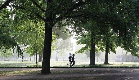 Kondiční cvičení - běh venku