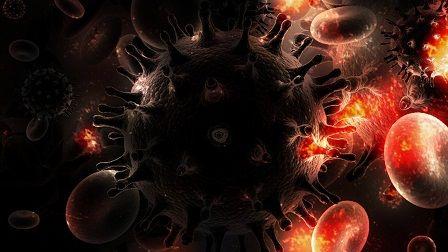 Chřipka - buňky