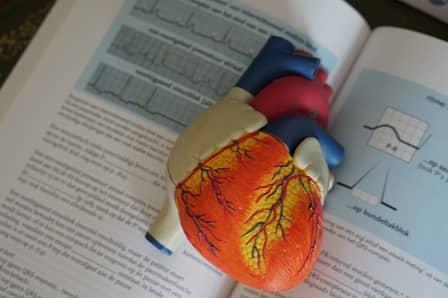 srdeční poruchy z nedostatku hořčíku